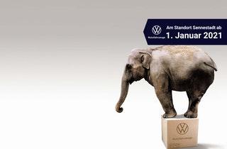 Unser Neuwagen-Vertrieb für Volkswagen Nutzfahrzeuge zieht vom Stadion in die Sennestadt!